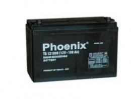 ac-quy-phoenix-ts121000-12v-100ah
